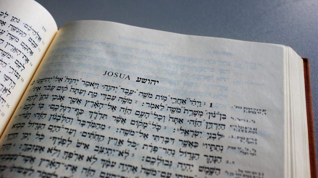 Understanding Biblical Hebrew