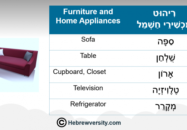 Furniture and Home Appliances