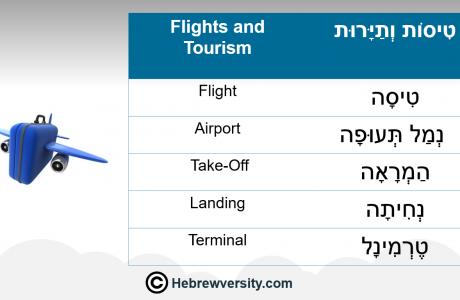 Flights & Tourism