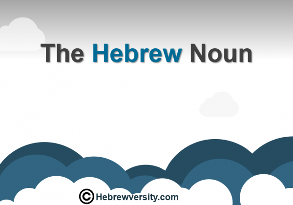 The Hebrew Noun