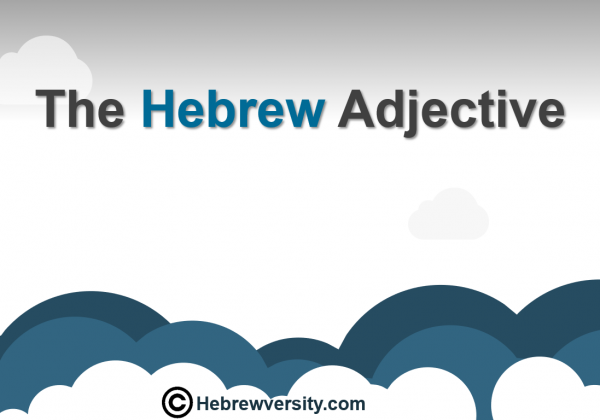 The Hebrew Adjective