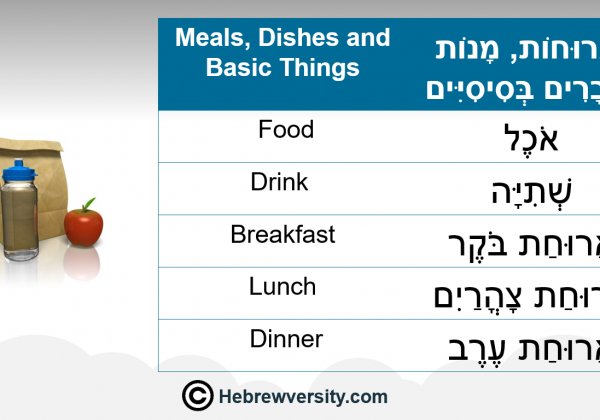 Meals, Dishes and Basic Things