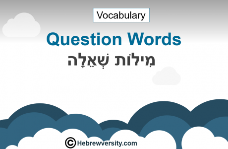 Question Words Vocabulary