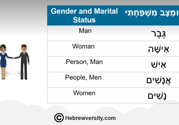 Gender and Marital Status