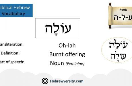 Biblical Hebrew Vocabulary List 30