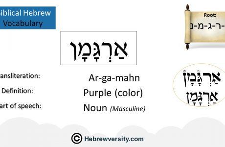 Biblical Hebrew Vocabulary List 27