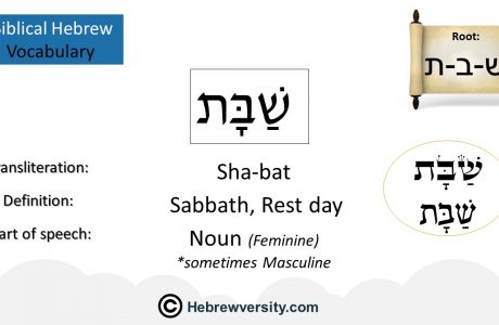 Biblical Hebrew Vocabulary List 12