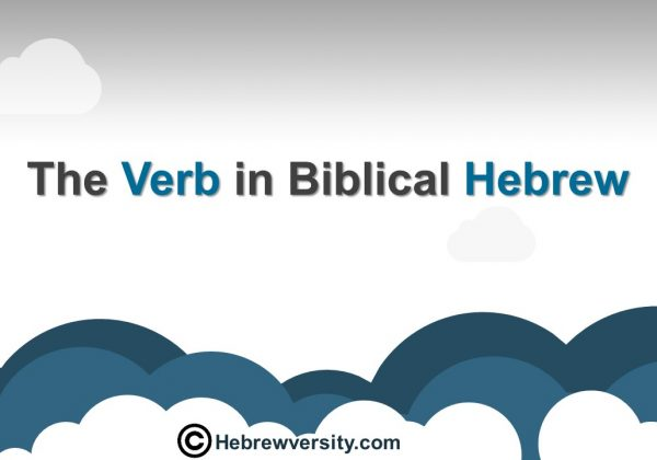 The Verb in Biblical Hebrew