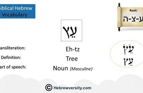 Biblical Hebrew Vocabulary List 9
