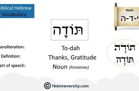 Biblical Hebrew Vocabulary List 10