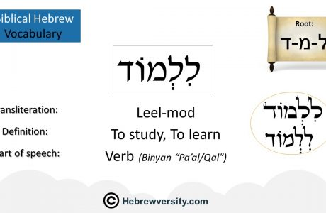 Biblical Hebrew Vocabulary List 6
