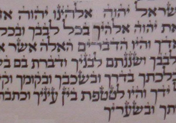 "Hidden Hebrew Letter Treasures in ""Shema Yisrael!"""