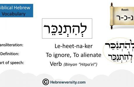 Biblical Hebrew Vocabulary List 22