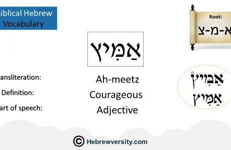 Biblical Hebrew Vocabulary List 19