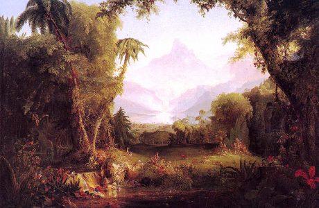 Vegetation, Plants and Trees: A Study of Botanical BiblicalHebrew