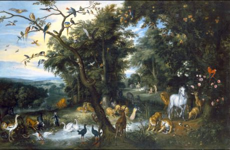 What Was Man's Role in the Garden of Eden?
